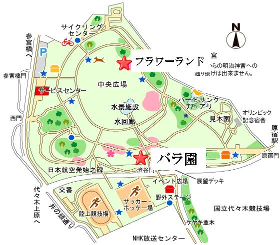代々木公園 バラ 場所