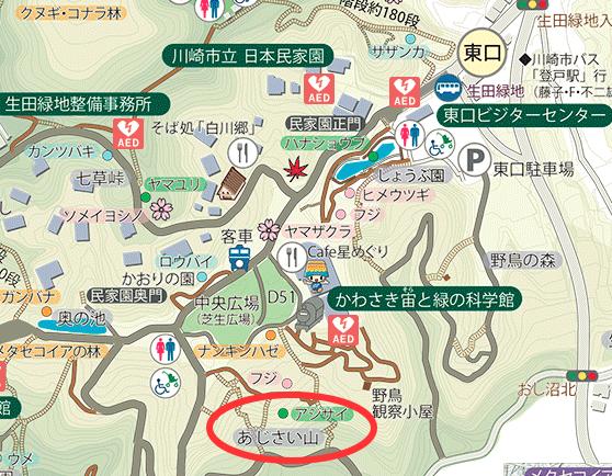 生田緑地 あじさい山 場所