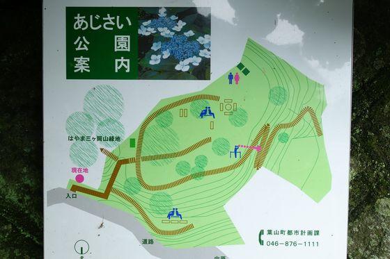 葉山あじさい公園 園内マップ