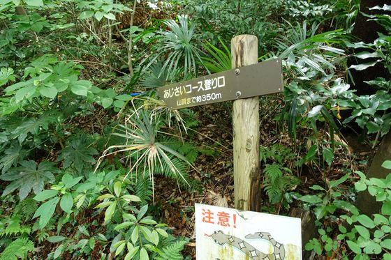 三ヶ岡山ハイキングコース