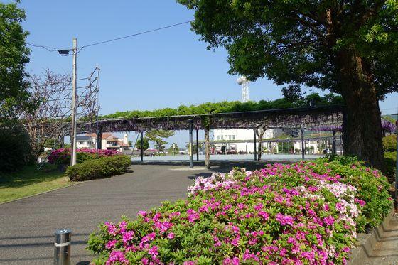 伊東 藤の広場