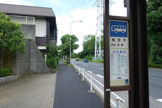 桜並木バス停