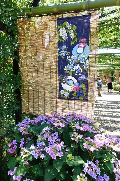 横浜イングリッシュガーデン 紫陽花