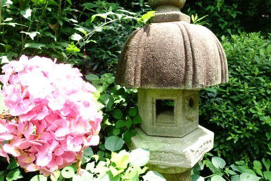 鎌倉 瑞泉寺 紫陽花