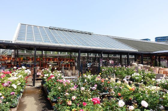 京成バラ園 ガーデンセンター