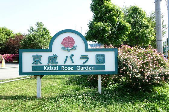 京成バラ園 入口
