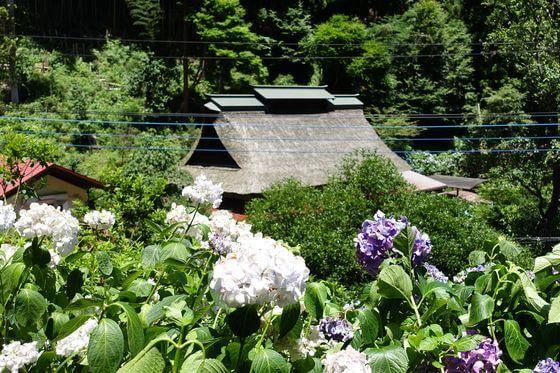 南沢あじさい山 からぶき屋根