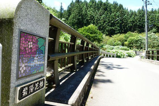 紫陽花橋 あきる野市