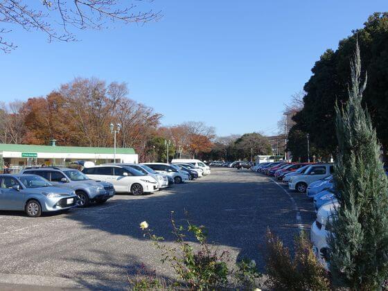 根岸森林公園 駐車場