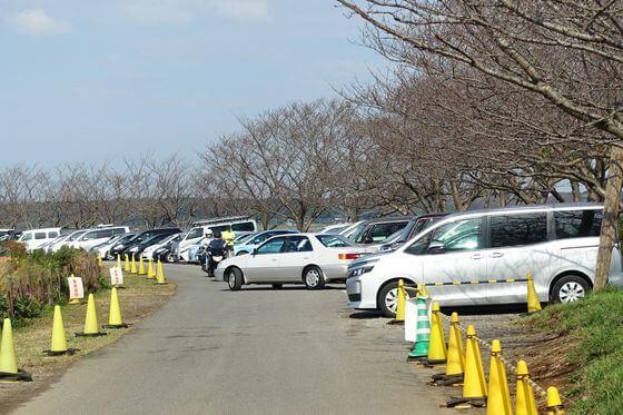 佐倉ふるさと広場 駐車場