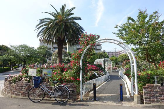 青和ばら公園 入口
