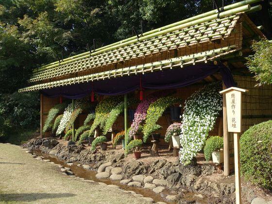 新宿御苑 懸崖作り花壇