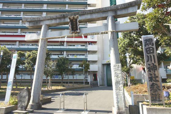 隅田川神社 墨堤通り