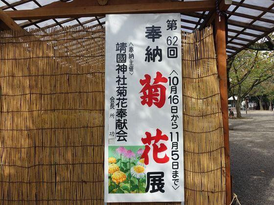 靖国神社 菊