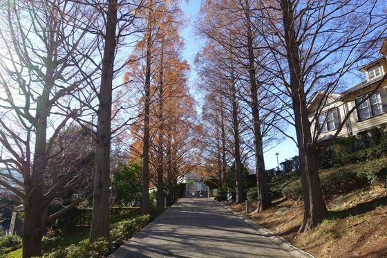 山手イタリア山庭園 紅葉