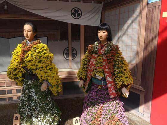 湯島天神 菊人形