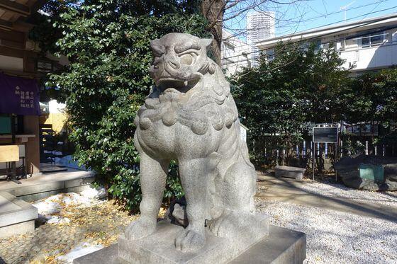 狛犬 雑司が谷大鳥神社