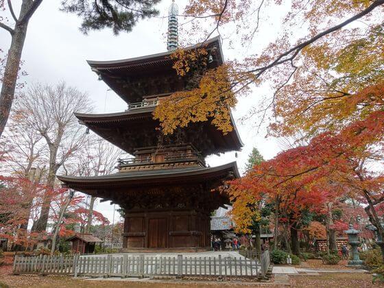 豪徳寺 三重塔