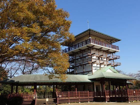 生田緑地 枡形山展望台 紅葉