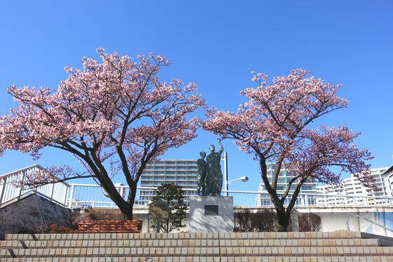釜鳴屋平七夫婦像 熱海桜