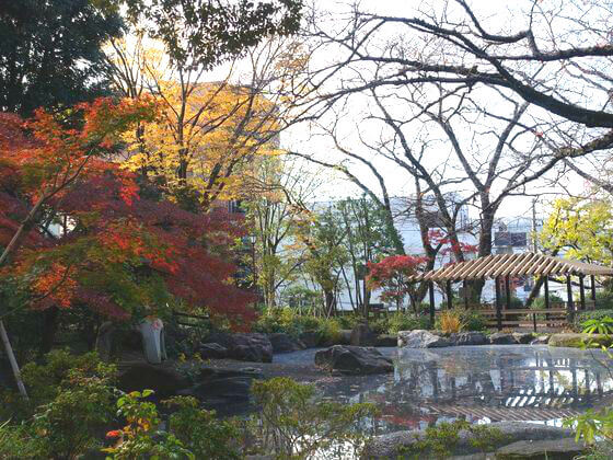 掃部山公園 日本庭園 紅葉