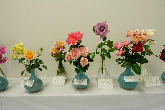 藤沢バラ会 春のバラ展