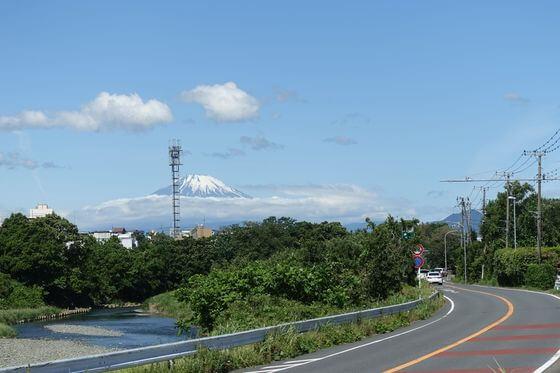花菜ガーデン 富士山