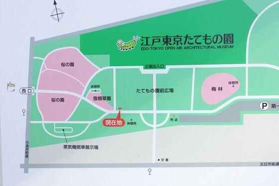 小金井公園 梅林 場所