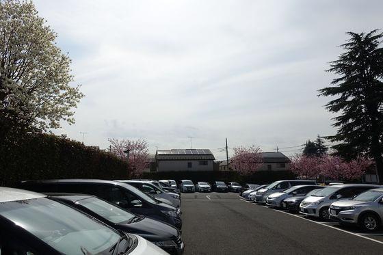 密蔵院 駐車場