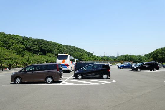 野津田公園 バラ 駐車場