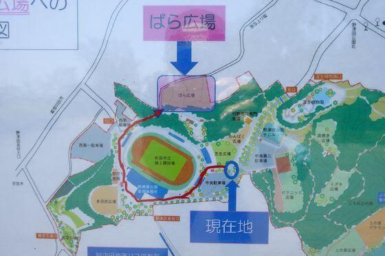 野津田公園 ばら広場 場所
