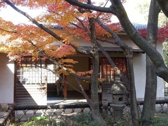 大田黒公園 茶室