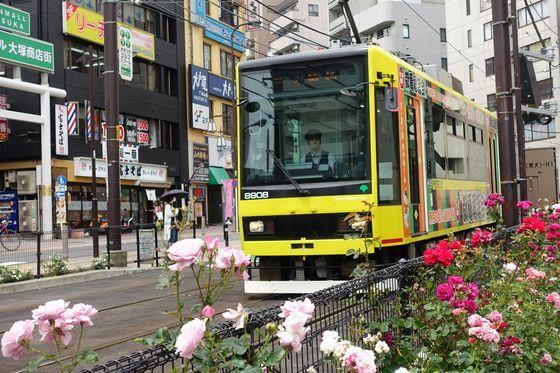 大塚駅 バラ