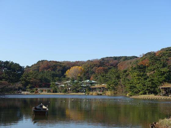 横浜 三渓園 紅葉