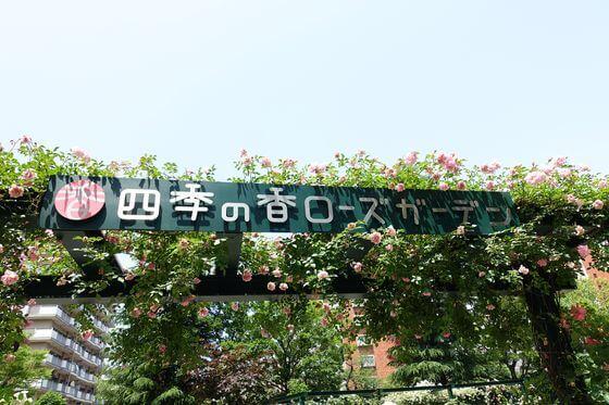 練馬 四季の香ローズガーデン