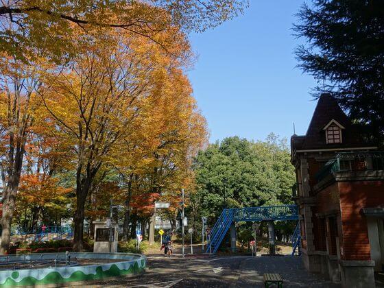 杉並児童交通公園 紅葉