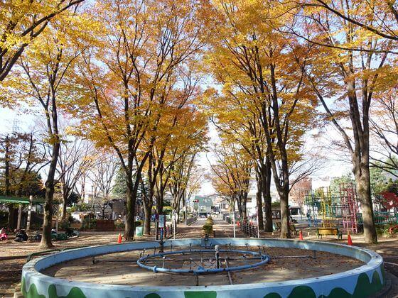 紅葉 杉並児童交通公園