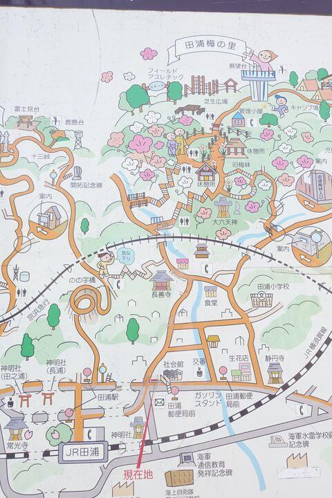 田浦梅林 地図