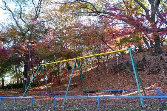 紅葉 戸山公園