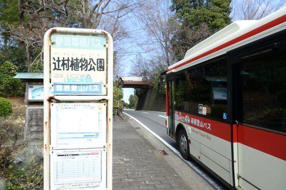 辻村植物園 バス