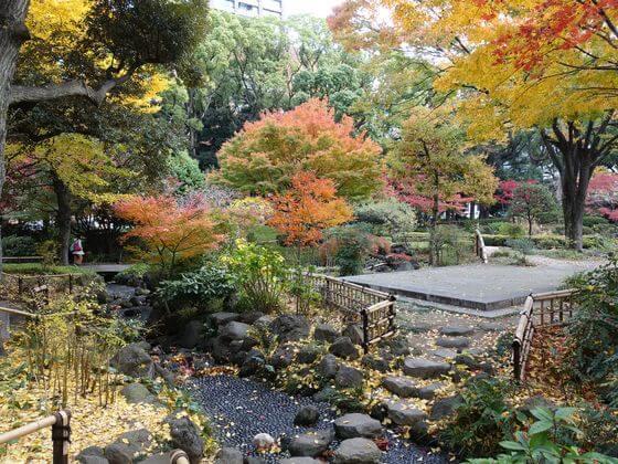 紅葉 横浜公園