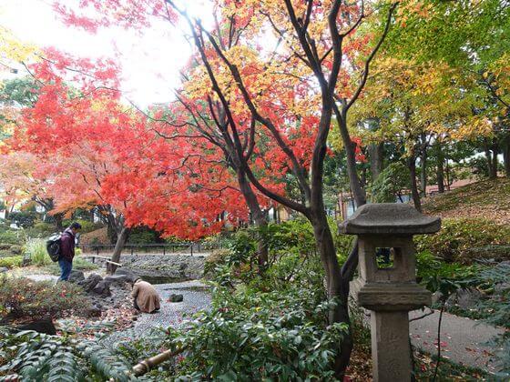 横浜公園 日本庭園 紅葉