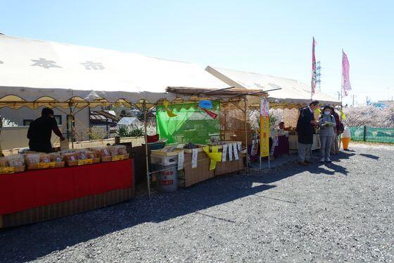 北本 石戸蒲ザクラ 桜祭り