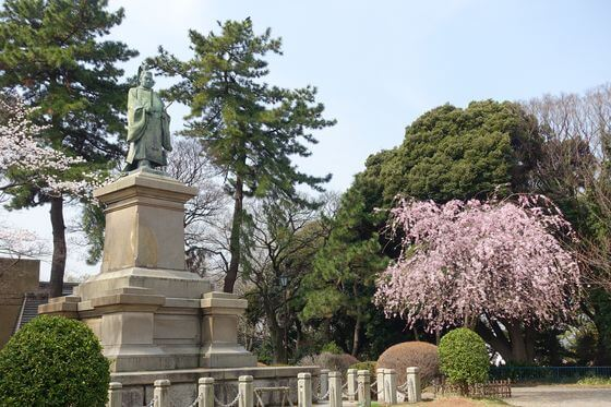 掃部山公園 桜