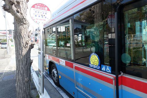衣笠山公園バス停