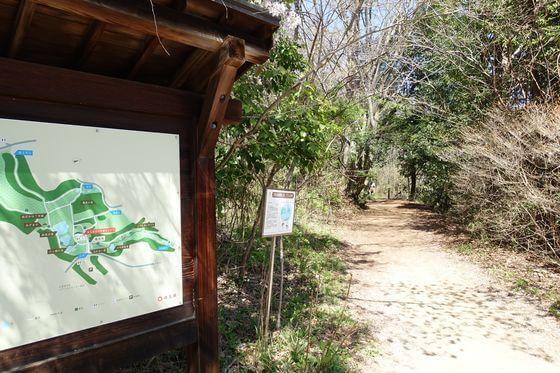 北本自然観察公園 ふれあい橋
