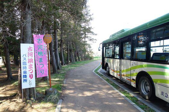 古河の桃まつり 臨時バス