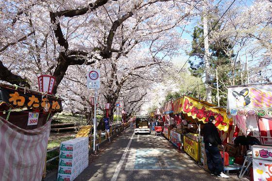 熊谷さくら祭