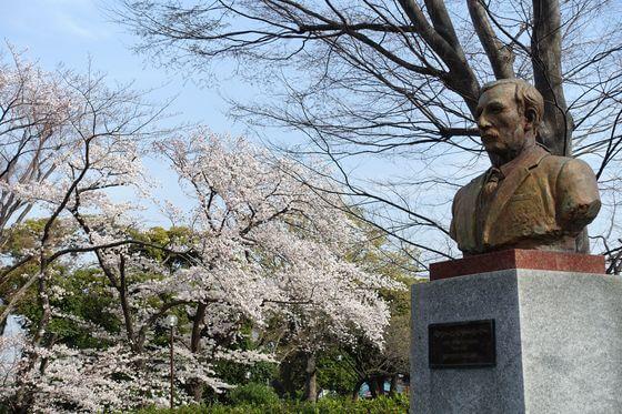 ヘンリースペンサー・パーマー像 桜