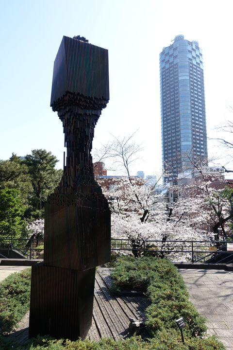 乃木公園 桜